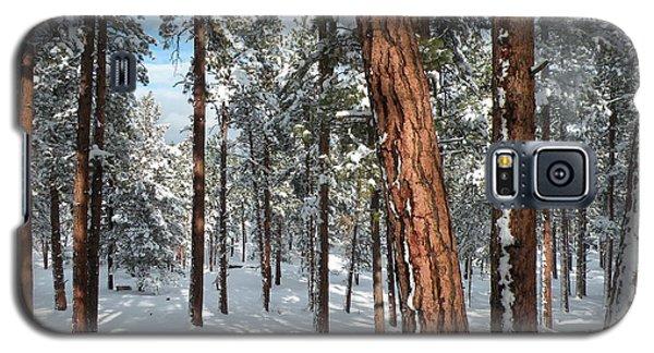 Ponderosa Winter Galaxy S5 Case by Jennifer Lake