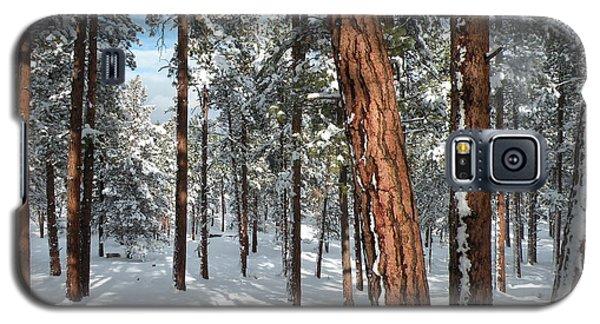 Ponderosa Winter Galaxy S5 Case