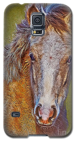 Pony Portrait  Galaxy S5 Case