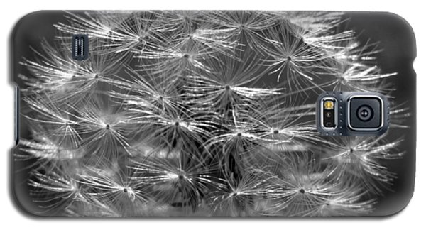 Galaxy S5 Case featuring the photograph Poof - Black And White by Joseph Skompski