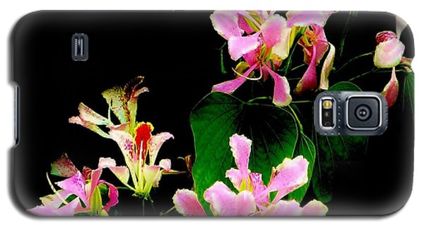 Poor Mans Orchid Galaxy S5 Case by Amar Sheow