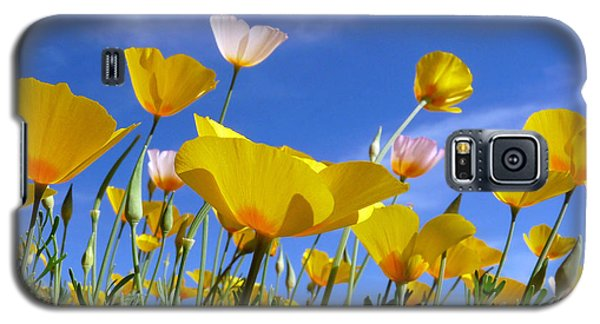 Poppies And Blue Arizona Sky Galaxy S5 Case by Lucinda Walter