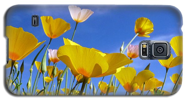 Poppies And Blue Arizona Sky Galaxy S5 Case