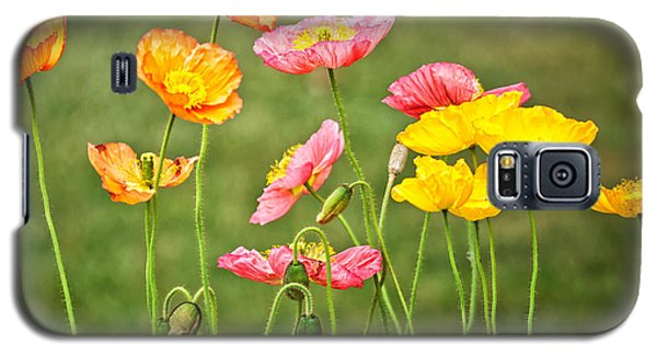 Poppies Blooming Galaxy S5 Case by Joan Herwig