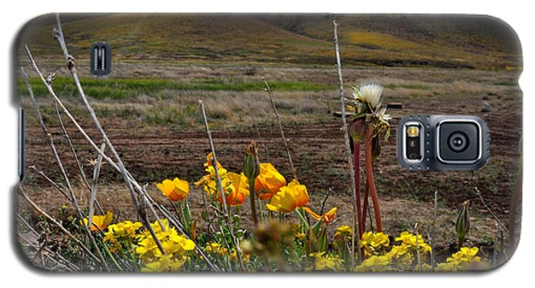 Galaxy S5 Case featuring the photograph Poppies In The Field Chiracahua Mountains by Diane Lent