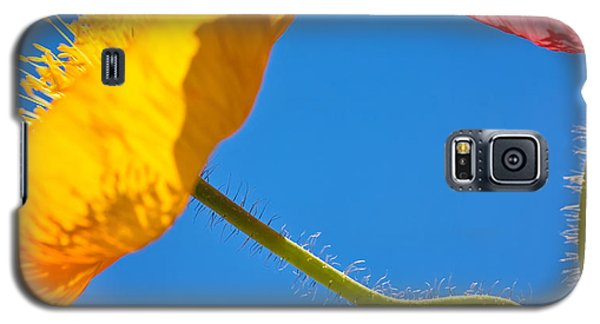 Poppies In The Sky Galaxy S5 Case by Joan Herwig