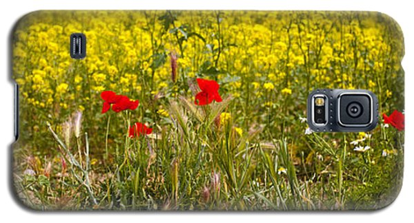 Poppies In Yellow Field Galaxy S5 Case