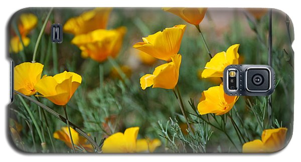 Galaxy S5 Case featuring the photograph Poppies by Tam Ryan