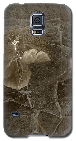 Poppies Under Ice Galaxy S5 Case