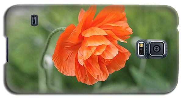Poppy 2 Galaxy S5 Case