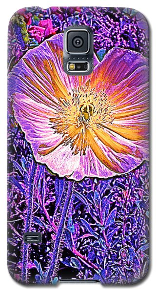 Galaxy S5 Case featuring the photograph Poppy 3 by Pamela Cooper