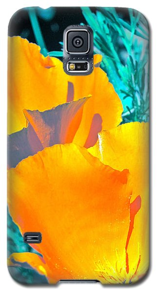 Galaxy S5 Case featuring the photograph Poppy 4 by Pamela Cooper