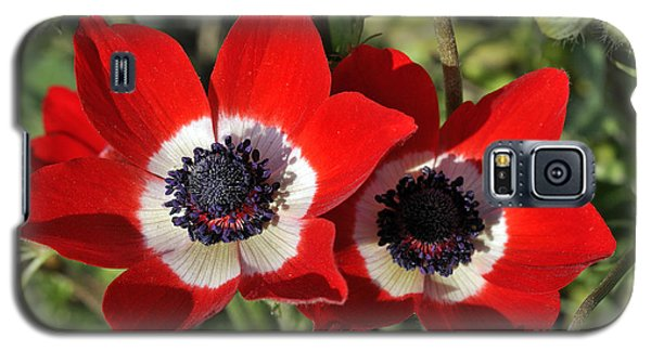 Galaxy S5 Case featuring the photograph Poppy Anemones by George Atsametakis