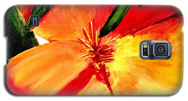 Poppy Galaxy S5 Case by Dana Patterson