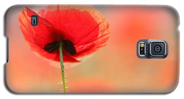 Poppy Dream Galaxy S5 Case by Roeselien Raimond