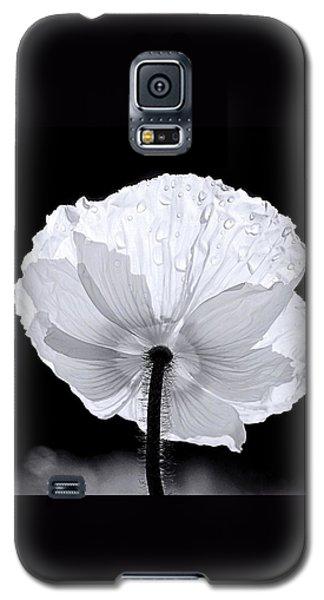 Poppy Galaxy S5 Case by Elizabeth Budd