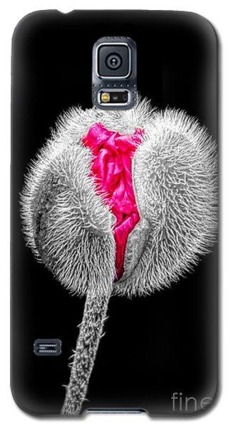 Poppy Emerging Galaxy S5 Case by Lynn Bolt