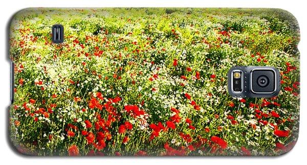 Poppy Field In Summer Galaxy S5 Case by Craig B