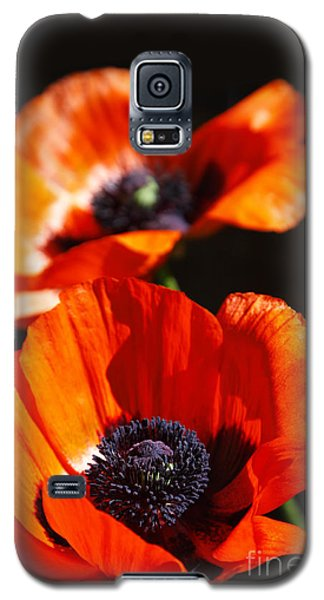 Poppy Flower Pair Galaxy S5 Case by Lincoln Rogers
