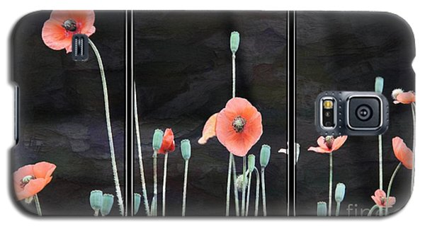 Poppy Triptych       Galaxy S5 Case by Yumi Johnson