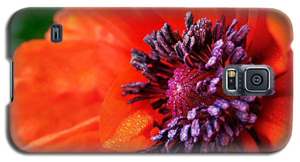 Poppy's Purple Passion Galaxy S5 Case by Bill Pevlor