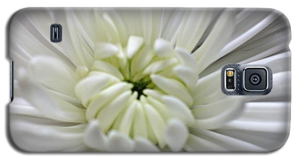 Porcelain Beauty Galaxy S5 Case