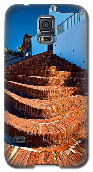 Porta Coeli Steps Galaxy S5 Case