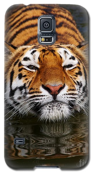 Galaxy S5 Case featuring the photograph Portrait Of A Bathing Siberian Tiger by Nick  Biemans