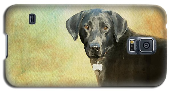 Portrait Of A Black Labrador Retriever Galaxy S5 Case
