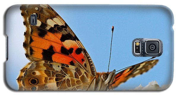 Galaxy S5 Case featuring the photograph Portrait Of A Butterfly by Nick  Biemans