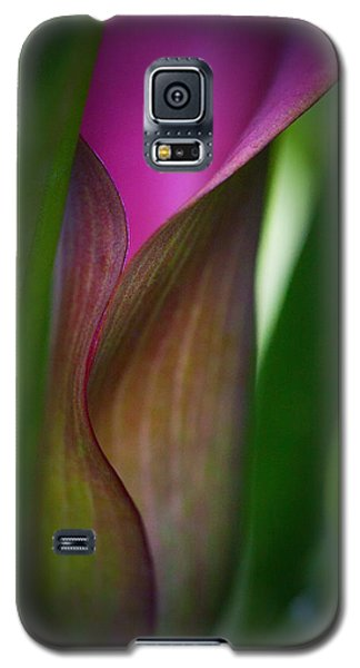 Galaxy S5 Case featuring the photograph Portrait Of A Calla Lily by Zoe Ferrie