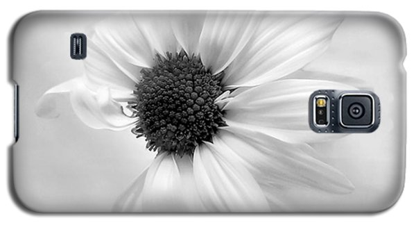 Portrait Of A Daisy Galaxy S5 Case by Louise Kumpf