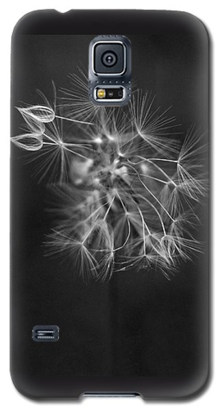 Portrait Of A Dandelion Galaxy S5 Case