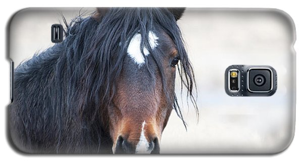 Portrait Of A Free Stallion Galaxy S5 Case