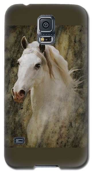 Portrait Of A Horse God Galaxy S5 Case