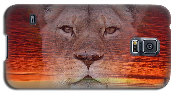 Portrait Of A Lioness At The End Of A Day Galaxy S5 Case by Jim Fitzpatrick