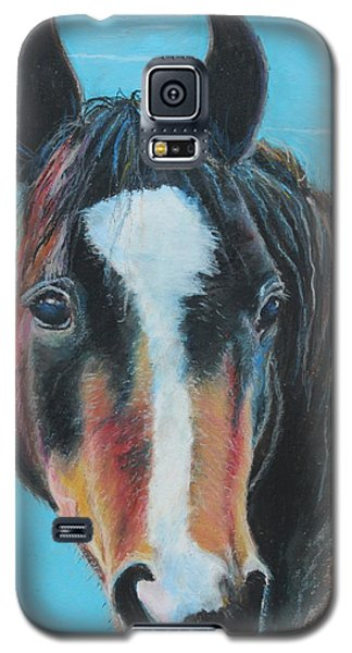 Portrait Of A Wild Horse Galaxy S5 Case