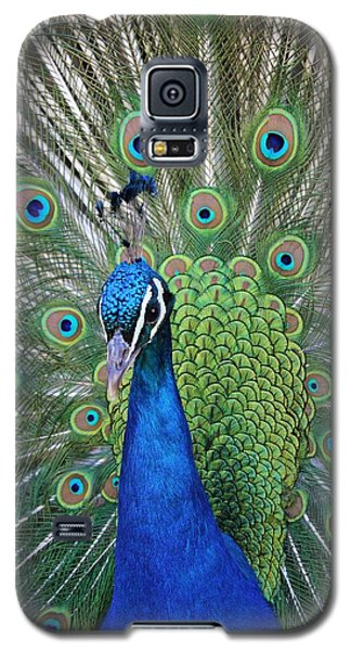 Portrait Of A Peacock Galaxy S5 Case by Diane Alexander