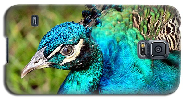 Galaxy S5 Case featuring the photograph Portrait Of A Peacock by Kathy  White