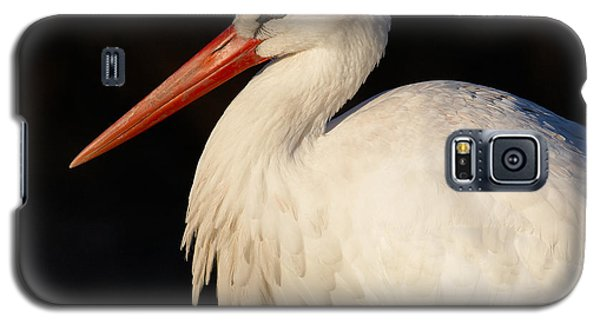 Galaxy S5 Case featuring the photograph Portrait Of A Stork With A Dark Background by Nick  Biemans