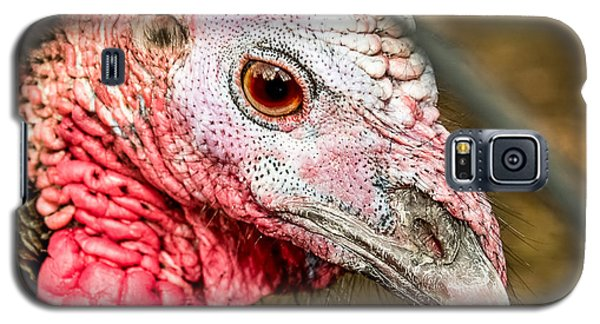 Portrait Of A Turkey Galaxy S5 Case