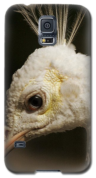 Galaxy S5 Case featuring the photograph Portrait Of A White Peacock by Lena Wilhite