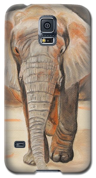 Portrait Of An Elephant Galaxy S5 Case
