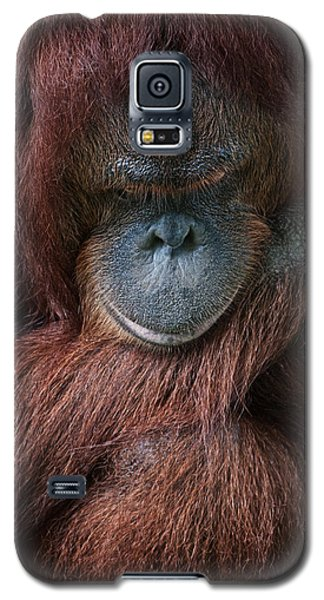 Galaxy S5 Case featuring the photograph Portrait Of An Orangutan by Zoe Ferrie