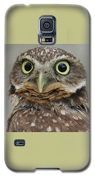 Portrait Of Burrowing Owl Galaxy S5 Case by Ben and Raisa Gertsberg