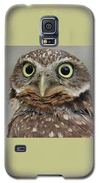 Portrait Of Burrowing Owl Galaxy S5 Case by Ben and Raisa Gertsberg