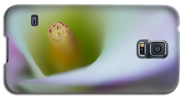 Galaxy S5 Case featuring the photograph Portrait Of The Stamen Of A Calla Lily by Zoe Ferrie