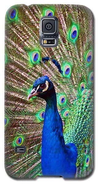 Portrait Peacock Galaxy S5 Case