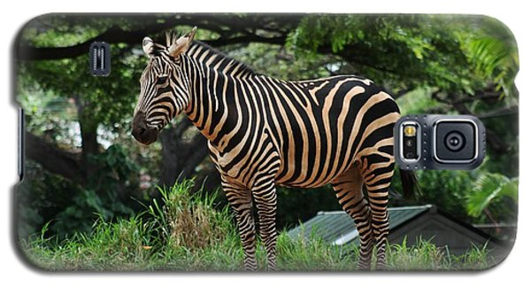 Galaxy S5 Case featuring the photograph Posing Zebra by Craig Wood