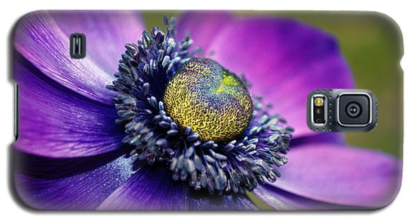 Positively Purple Galaxy S5 Case by Kjirsten Collier